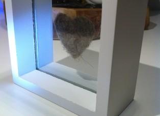 Birderrahmen Glas schwebend1